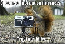 funny-pictures-creepy-squirrel-camera-park.jpg