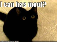 lolcats-funny-pictures-i-can-has-mouth.jpg